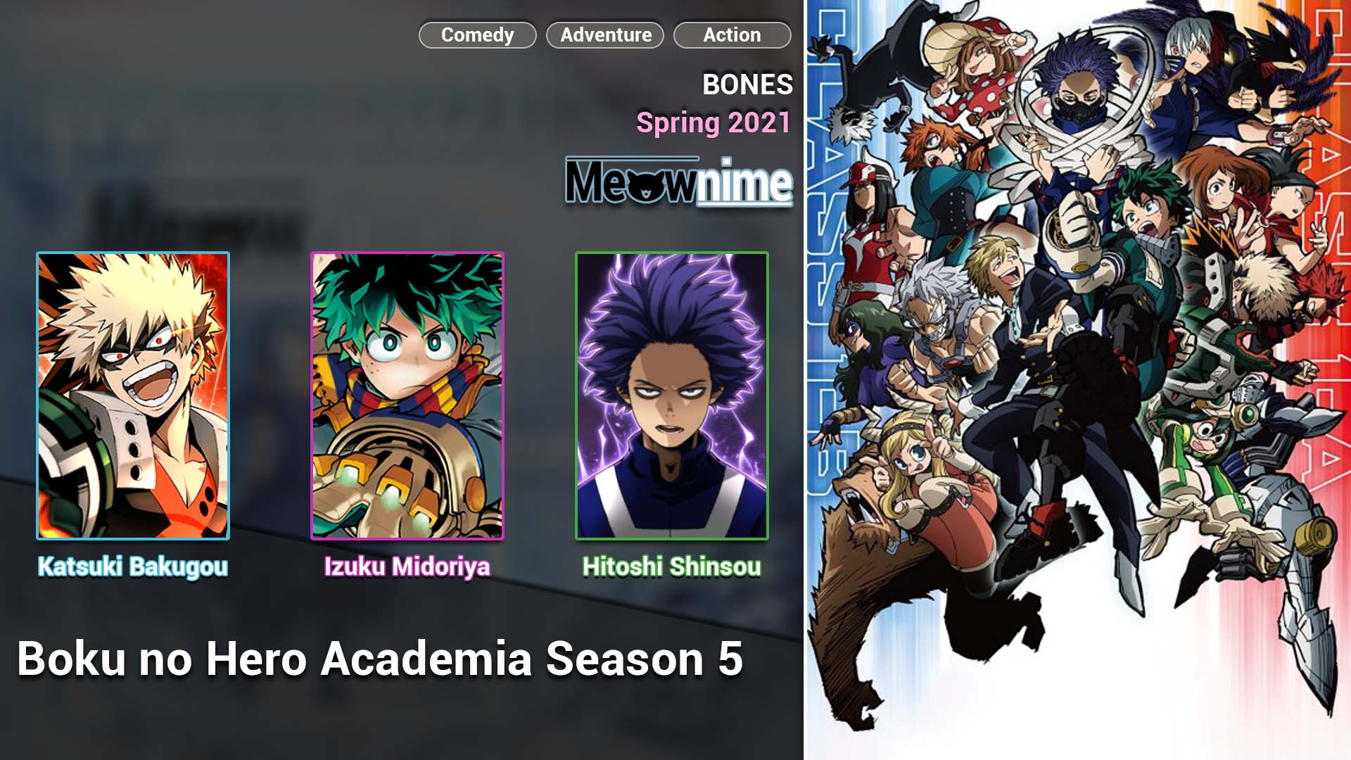 Boku no Hero Academia Season 5.